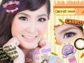 carrot-brown-set1 dreamcolor1